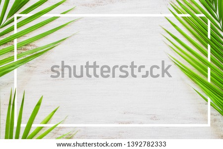 Hello summer travel vacation concept flat lay poster background concept. Hello Summer text on white wood background with green nature tropical palm leaf. Top view with copy space. #1392782333