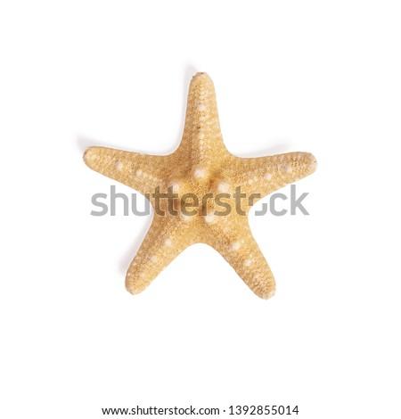 Isolated starfish on white background.Top view Royalty-Free Stock Photo #1392855014