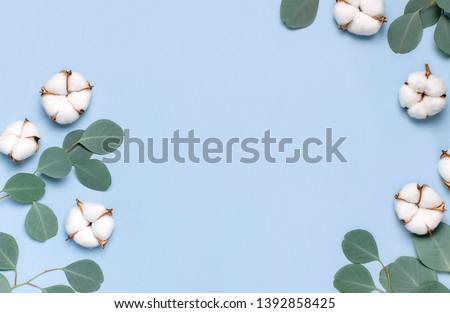 Frame made of cotton flowers and fresh eucalyptus twigs on light blue background. Flat lay flowers composition. Top view, copy space. Delicate white cotton flowers. Floral background, greeting card #1392858425