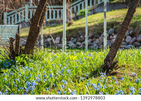 Flowers on the grass under the Sun #1392978803