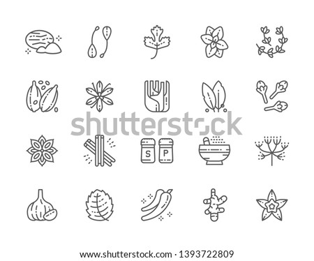 Set of Spice Line Icons. Nutmeg, Capers, Parsley, Oregano, Thyme, Cardamom, Vanilla, Fennel, Cloves, Cinnamon, Caraway, Garlic, Ginger and more. Pack of 48x48 Pixel Icons #1393722809