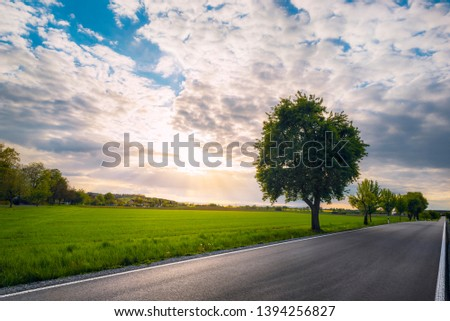 Long asphalt road with trees on the side, along agricultural fields, at sunset, near Schwabisch Hall, Germany. Street with no people and no cars. #1394256827