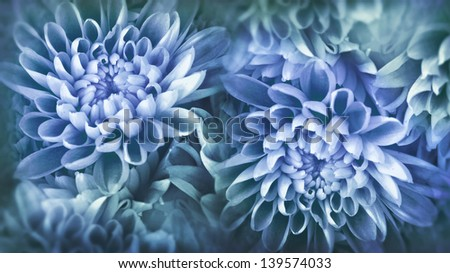 abstract flower photo in blues  #139574033