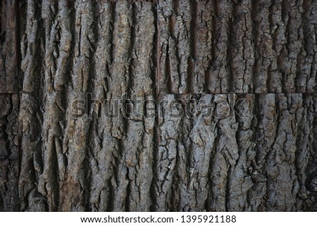 natural tree bark texture. Seamless tree bark texture. Endless wooden background for web page fill or graphic design. Oak or maple vector pattern #1395921188