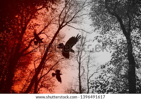 crows flying in forest between tree branches, dark scary horror scene Royalty-Free Stock Photo #1396491617