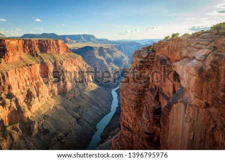 Man staring in to the Grand Canyon, Arizona, USA. #1396795976