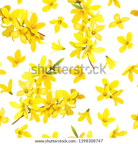 Golden Bell seamless pattern Forsythia suspensa, Easter tree, spring branch with blossoming yellow flowers. Vector illustration. Spring decor europaea blooming in garden bush for prints, posters, card #1398308747