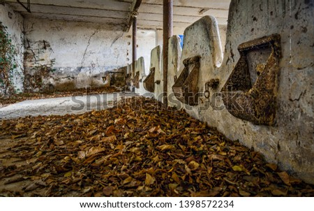 old abandoned stables in the nowhere #1398572234