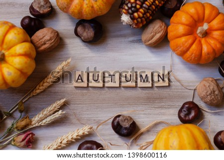 Paris / France - May 14 2019. Word Autumn added from wooden scrabble letters. Decorated with seasonal props: orange pumpkins, chestnuts, walnut, corn, seed. Cozy warm atmosphere, wooden background #1398600116
