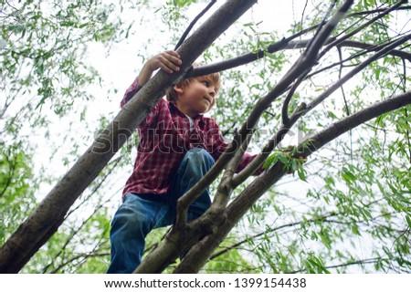 Outdoors portrait of cute preschool boy climbing a tree #1399154438