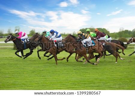 Race horses with jockeys on the home straight. Shaving effect. Royalty-Free Stock Photo #1399280567