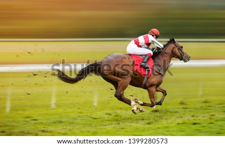 Race horse with jockey on the home straight. Shaving effect. #1399280573
