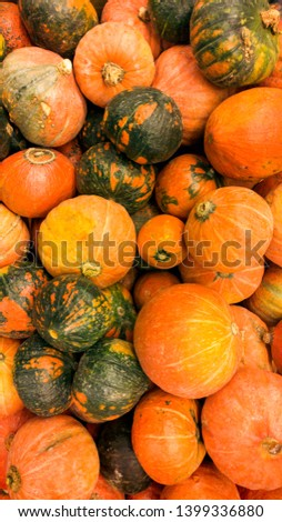 Closeup image of orange pumpking in begetable soter.Closeup texture or pattern of fresh ripe vegetables. Beautiful food background #1399336880
