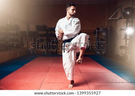 Martial arts master, black belt, karate Royalty-Free Stock Photo #1399355927