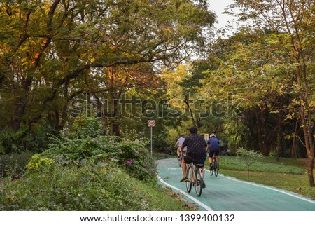 Bike lanes or cycle lanes are types of bikeways (cycleways) with lanes on the roadway for cyclists only.At Wachira Benchathat Park (Rot Fai Park) Bangkok Thailand #1399400132