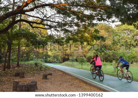 Bike lanes or cycle lanes are types of bikeways (cycleways) with lanes on the roadway for cyclists only.At Wachira Benchathat Park (Rot Fai Park) Bangkok Thailand #1399400162