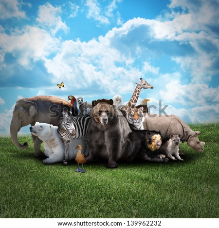 A group of animals are together on a nature background with text area. Animals range from an elephant, zebra, bear and rhino. Use it for a zoo or conservation concept.