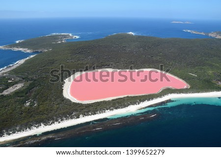 Lake Hillier: the amazing Pink Lake, landmark of Australia, located on Middle Island, near Esperance, Western Australia.  #1399652279