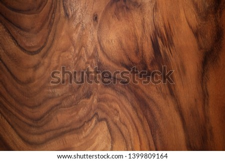 wood texture background surface with old natural pattern                  #1399809164