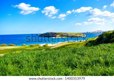 Island greenery - Island of Malta  #1400353979