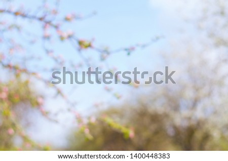 A blurred spring background. Blurred blooming trees on a sunny day.  #1400448383