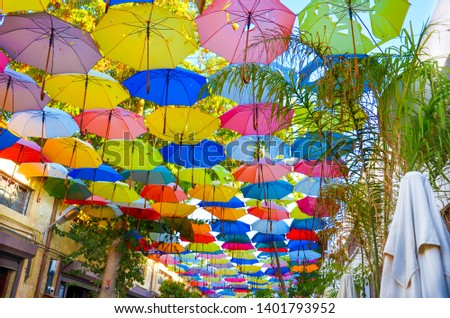Colorful umbrellas decorating the top of the street in Cypriot Nicosia. The umbrella serves also as a shade and protection against the sunshine. Among the umbrellas there are green tree branches #1401793952