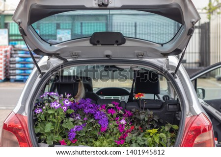 Trunk ( boot ) of the car filled with beautiful garden flowers and herbs. Car parked outside garden centre .  #1401945812