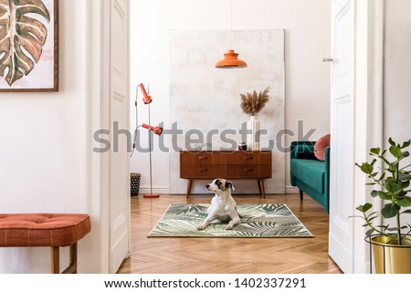 Stylish compositon of retro home interior with mock up poster frame, dog on the carpet, vintage furnitures, velvet sofa, design lamps, plants and elegant accessories. Nice home decor of living rooms.  #1402337291