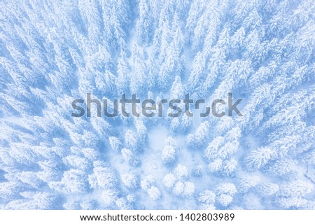Winter forest patterns. Winter forest covered with snow aerial drone view. Winter forest background. Christmas background.
