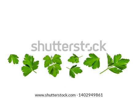 chopped parsley leaves isolated on white background with copy space above #1402949861