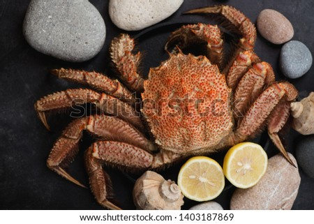 Above view of horsehair crab or hairy crab over dark metal background with pebbles, horizontal shot #1403187869