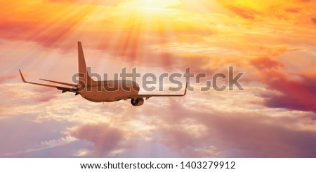 Airplane flying above tropical sea at sunset #1403279912