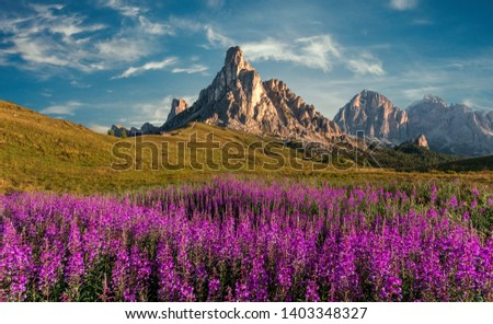 Scenic image of Dolomites Alps. Wonderful sunny Landscape. Great view on famouse Ra Gusela peak, perfect sky and pink flowers on background. Awesome alpine highlands in sunny day. stunning scenery #1403348327