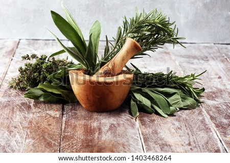 Homegrown and aromatic herbs on rustic background.Set of culinary herbs. Green growing sage, oregano, thyme, basil, mint and oregano. #1403468264