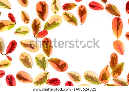 Pink sweet leaves with space in heart shaped isolated on white background.. #1403624321