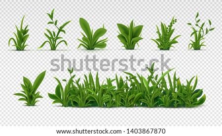 Realistic green grass. 3D fresh spring plants, different herbs and bushes for posters and advertisement. Vector set isolated objects on white #1403867870