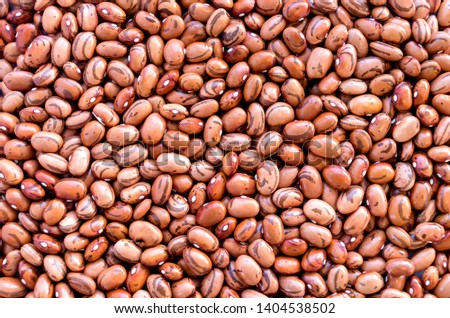 Beans of bean ( beans ).  Background of many grains of dried beans. Brown beans texture. Food background. Close up. Bean background and textured. Background of brown bean. Brazilian diet snack food. #1404538502