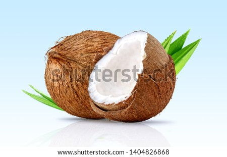 Fresh ripe coconut, coconut half piece with white flesh and palm leaves closeup isolated. Tropical coconut fruits composition with focus stacking. Full depth of field design element. Clipping path #1404826868