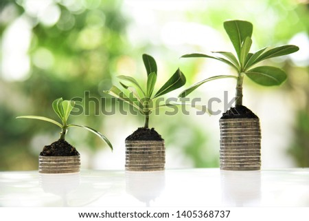 young plant growing on coin stacks;garden bokeh background #1405368737