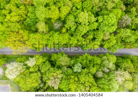 Aerial view of long road cutting through forest #1405404584