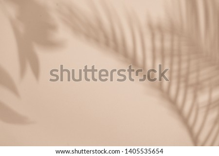 Top view of green tropical leaf shadow on sand color background. Flat lay. Minimal summer concept with palm tree leaf. Creative copyspace. #1405535654