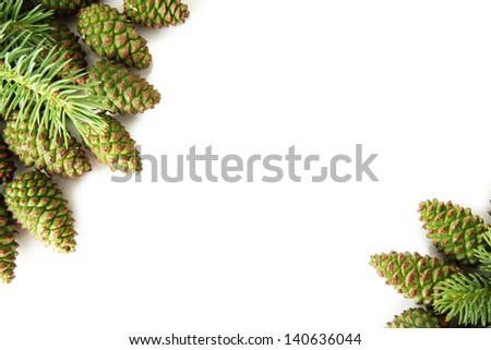 Green cones and fir tree isolated on white #140636044