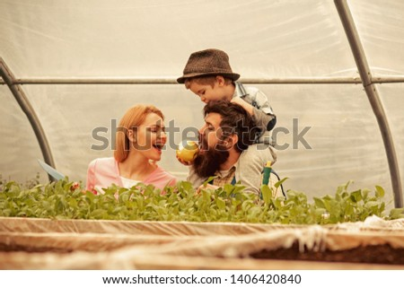 seed germinating. seed germinating concept. happy family watch on seed germinating. seed germinating or planting in greenhouse. paying attention to every detail #1406420840