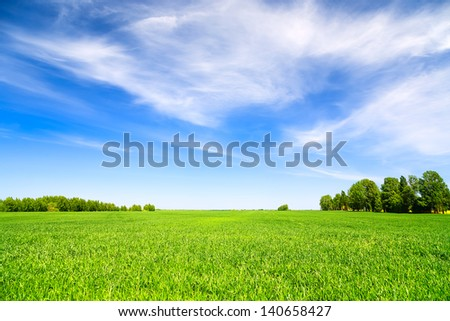 Green field and blue sky #140658427