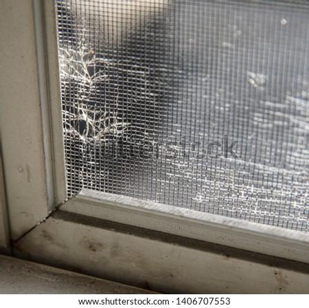 window screen has been torn and needs repair #1406707553