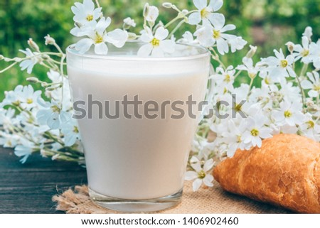A glass cup of milk stands beside croissants and white small flowers. #1406902460