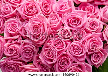 pink natural roses background #140690431