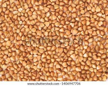 Closeup of buckwheat groats background. #1406947706