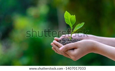 environment Earth Day In the hands of trees growing seedlings. Bokeh green Background Female hand holding tree on nature field grass Forest conservation concept Royalty-Free Stock Photo #1407017033