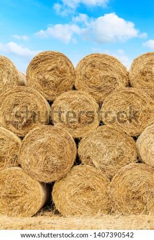 Straw bales on farmland with blue cloudy sky #1407390542